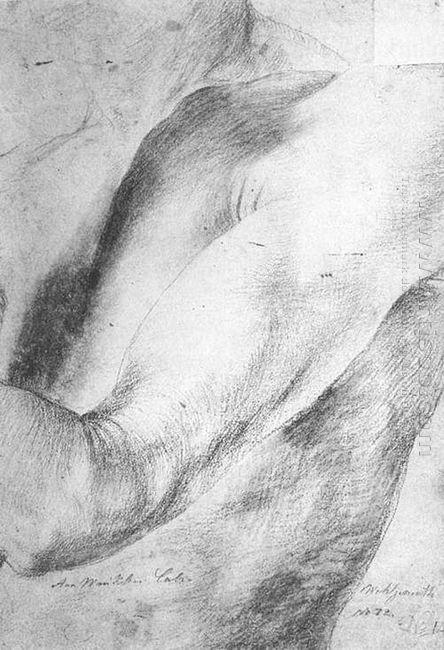 Forearm Study 1514