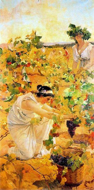 Grape Harvest 1896
