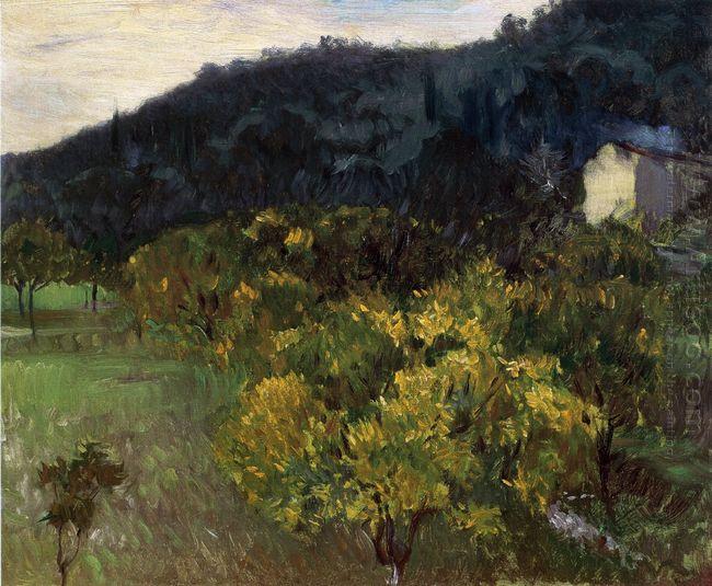 Landscape Near Grasse