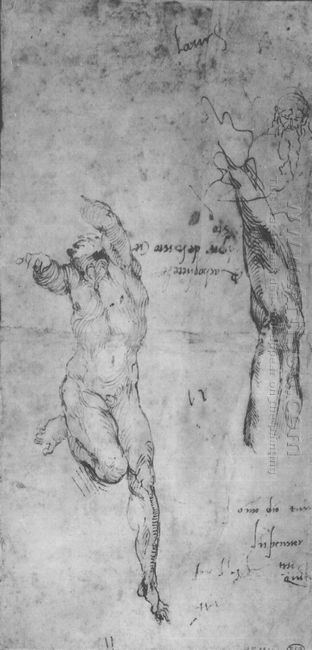 Male Nude And Arm Of Bearded Man 1504