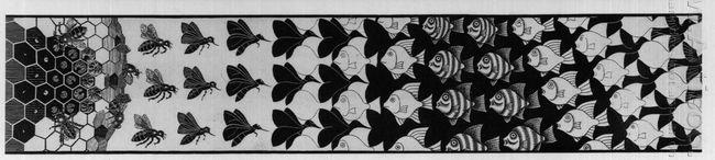 Metamorphosis Iii Excerpt 3 1968