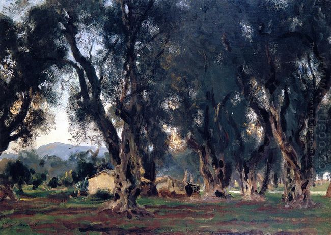 Olive Trees At Corfu 1909