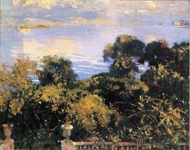 Oranges At Corfu