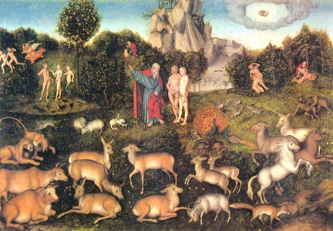 Paradise 1536
