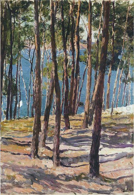 Pine Trees 1902
