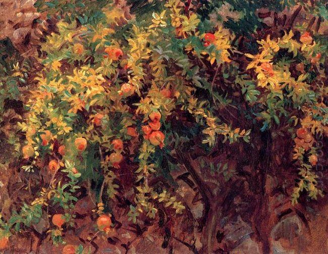 Pomegranates 1908 1