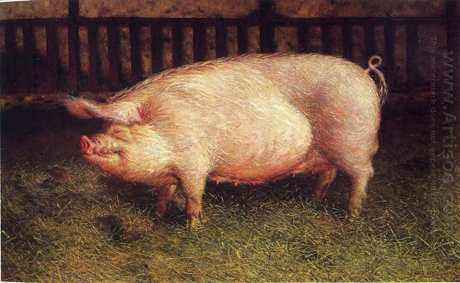 Portrait Of Pig 1970