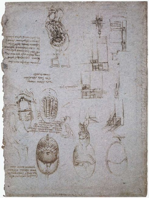 Studies Of The Villa Melzi And Anatomical Study 1513