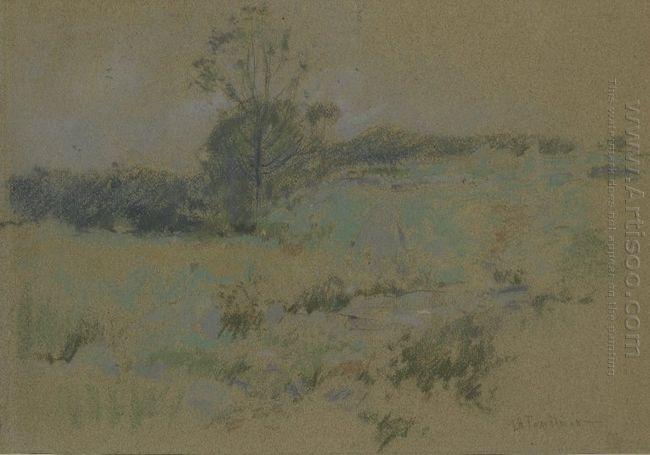 Study Of A Landscape 1895