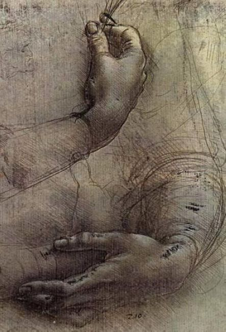 Study Of Arms And Hands A Sketch By Da Vinci Popularly Considere