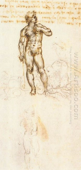 Study Of David By Michelangelo 1505