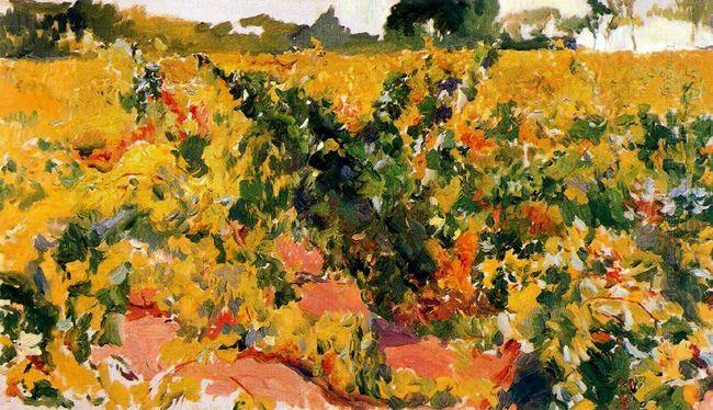 Study Of Vineyard