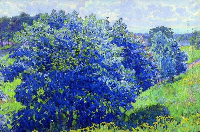 The Blue Bush 1908