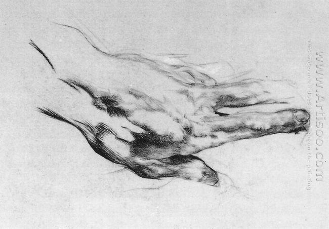 The Left Artist S Hand