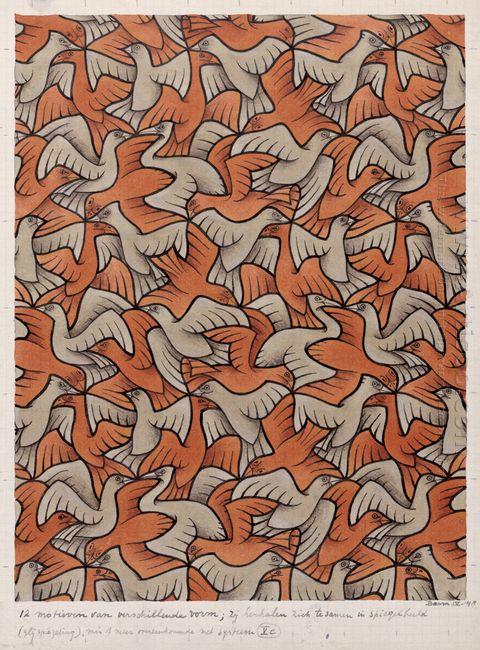 Twelve Birds