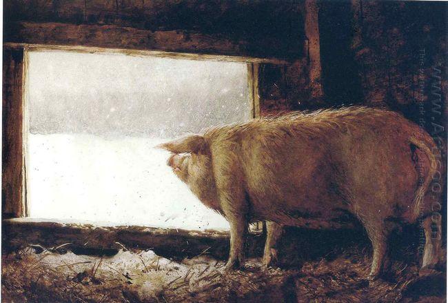 Winter Pig 1975