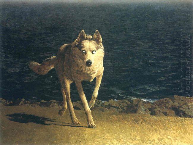 Wolf Dog 1976