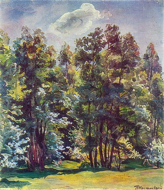 Alder Against The Sun 1932