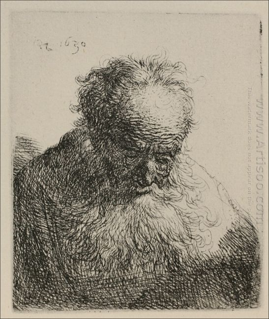 An Old Man With A Large Beard 1630
