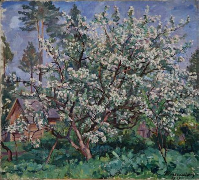 Apple Tree In Bloom 1937