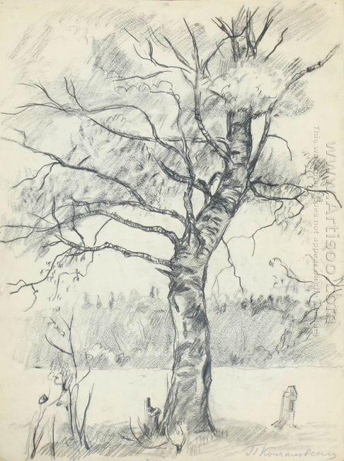 Birch Tree 1926