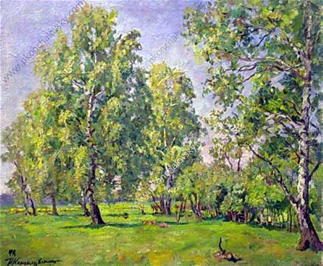 Birch Trees In Early Spring 1946