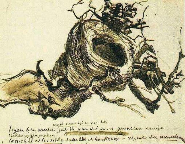 Bird S Nest 1885