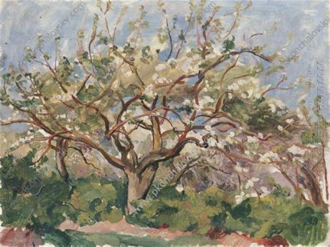Blossoming Garden 1930