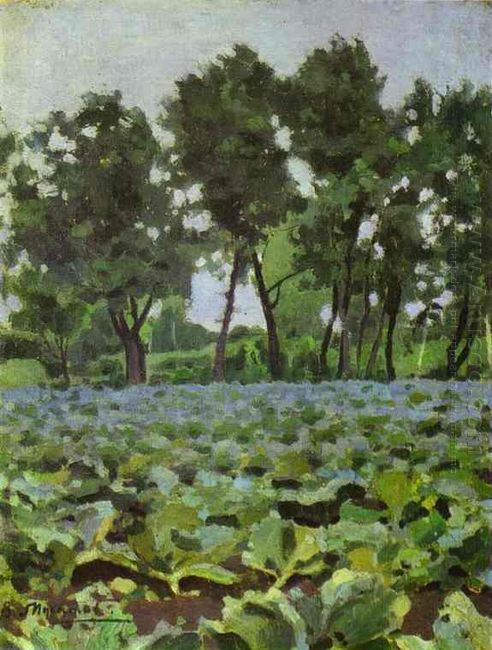 Cabbage Field With Willows